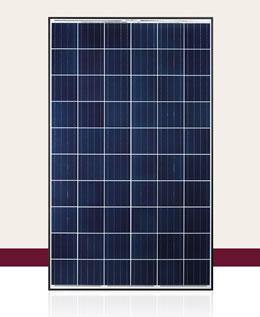 QCELLS QPlus 275-285 Solar Panel